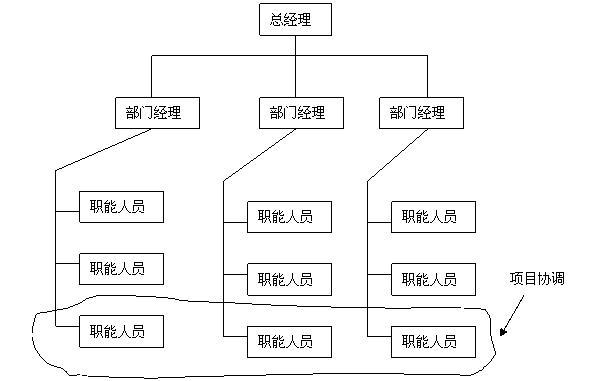 图: 弱矩阵组织结构图