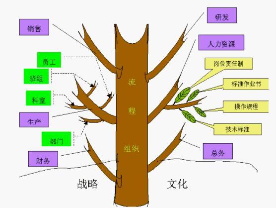 树木的组成结构图
